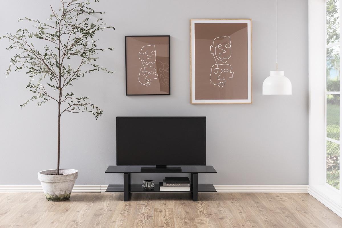 Dkton Štýlový TV stolík Akamu, čierna - Posledný kus